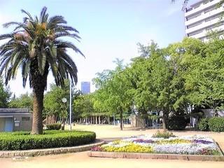 下福島公園花壇.jpg